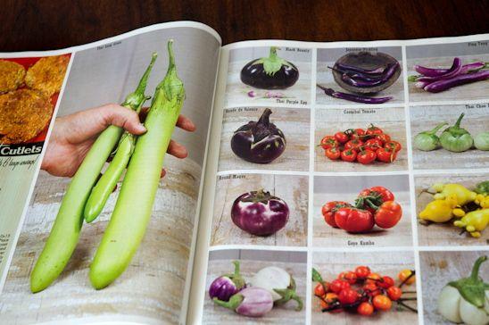 Baker's Seeds, Garden